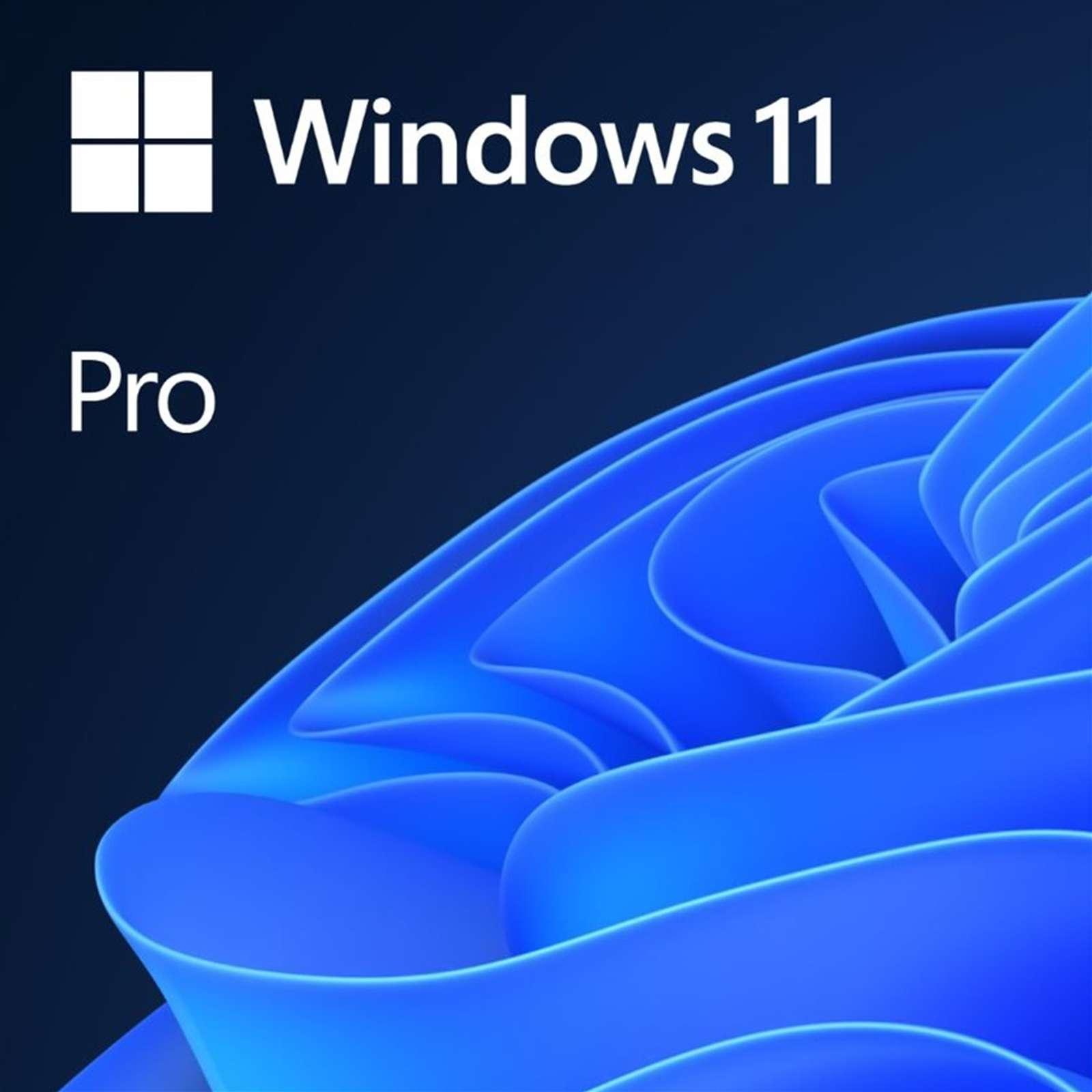 Windows 11 Pro 64-bit